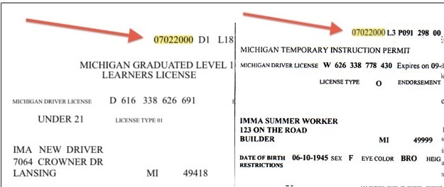 state of michigan drivers license road test